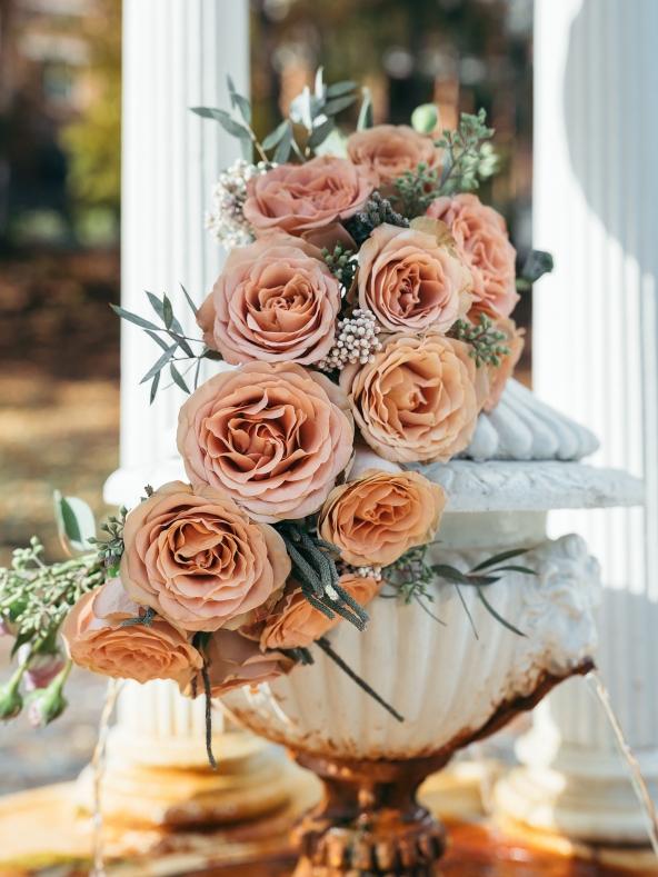 Garland of Cappuccino roses at Deer Park Spring, Saratoga Springs